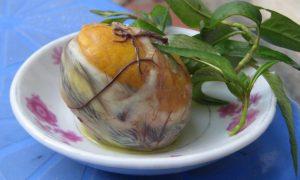 Quasi frisch aus dem Ei gepellt. Meine Damen und Herren - Hot Vit Lon! (Bild: Wikimedia Commons)